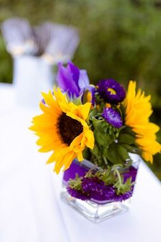 Sunflowers, irises and purple asters.