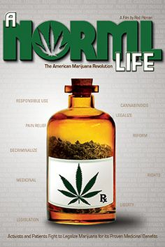 A Norml Life:  NORML or National Organization of the Reform for Marijuana Laws has long advocated the decriminalization of cannabis. Its founder, leaders and national representatives describe the patchwork of state and municipal laws that allow medical marijuana.  http://ykr.be/1rh82p18sr.  CSR PRODUCTIONS Entertainment Group, Inc.  www.csrentertainment.com.  #film, #documentary, #texas, #csrproductions, #csrentertainment, #norml, #life, @csrproductions1