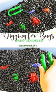 Digging for Bugs Spring Sensory Bin, Spring has finally arrived! And it's time to explore the outdoors. If your kids are just like mine, they like to dig in the ground. My 11 year old is . Toddler Sensory Bins, Sensory Tubs, Sensory Boxes, Toddler Learning Activities, Spring Activities, Motor Activities, Infant Activities, Sensory Play, Sensory Diet