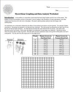 Graphing and Data Analysis Worksheet FREE