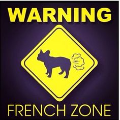 "Click visit site and Check out Cool ""French Bulldog"" T-shirts. This website is superb. Tip: You can search ""your name"" or ""your favorite shirts"" at search bar on the top."