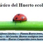 MANUAL BÁSICO DEL HUERTO ECOLÓGICO Garden, Home, Edible Wild Mushrooms, Organic Matter, Vertical Vegetable Gardens, Healthy Eating, Planters, Vegetable Garden