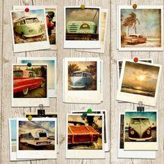Muriva Summer Days Wallpaper Multi Coloured / Sepia (102537) - Muriva from I love wallpaper UK