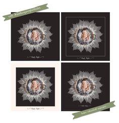 Preis-II.jpg -  Floral Set Vol 1 - Photoshop und Lightroom Templates