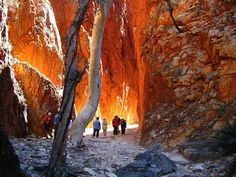 Standley Chasm, near Alice Springs, is a huge gap at the tail end of the West MacDonnell Ranges.