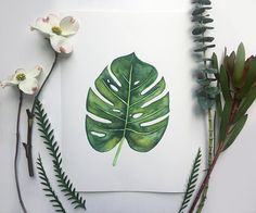 Monstera Art Print - Greenery - Tropical - Botanical art - Home Decor - Wall Art - Watercolor Art - Tropical Art