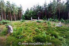 Cothiemuir Wood - Recumbent Stone Circle - Aberdeenshire