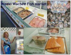 Weeki Wachee Fish and Seafood Market Photo by Silvia Dukes