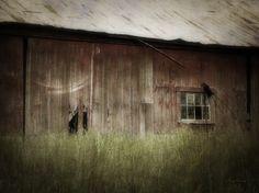 Barn West.  cynthia-lassiter.artistwebsites.com