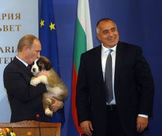 Putin: Even the President of Bulgaria gave Putin a new puppy!