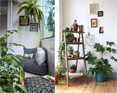 Crates in my living room corner. Crates as plant stands. Succulents and other indoor plants. You are in the right place about Diy Home Decor, Room Decor, Room Art, Crate Furniture, Furniture Ideas, Furniture Online, Diy Indoor Furniture, Pool Furniture, Wooden Furniture