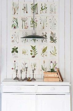 Swedish interior design inspiration with botanical prints over vintage cupboard - found on Hello Lovely Studio Vintage Botanical Prints, Botanical Art, Botanical Illustration, Botanical Drawings, Herbs Illustration, Botanical Wallpaper, Vintage Floral, Big Blank Wall, Blank Walls