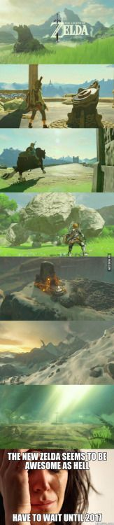 What do you think about it? (Zelda - Breath of the Wild)