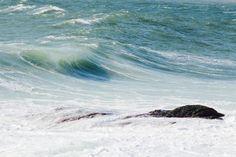 East Surf Co