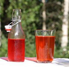 Hot Sauce Bottles, Lata Dagar, Alcoholic Drinks, Pudding, Wine, Canning, Bad, Glass, Drinkware