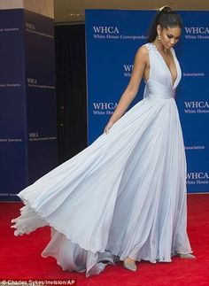 Model moment: Chanel Iman wowed in her sky blue gown on the red carpet which featured a full floaty skirt and plunging neckline