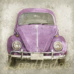 Pink Bug or CHOOSE your color Original Photograph by leedledee