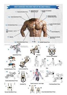 Los mejores ejercicios para un pectoral perfecto, guia detallada ilustrada