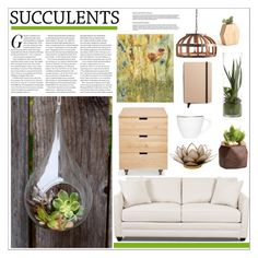 """""""Succulent Summer!"""" by moosegodstiel ❤ liked on Polyvore featuring interior, interiors, interior design, home, home decor, interior decorating, Home Decorators Collection, Dot & Bo and Shinola"""