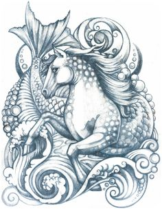 SeaHorse   an illustration available on Society6  by Rhiannon Moore (kitchimama) www.kitchimama.com
