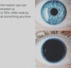 eye pupil meme - Posted by u/CeruleanCharmander Really Funny Memes, Stupid Funny Memes, Funny Relatable Memes, Haha Funny, Meme Template, Templates, Character Template, Blank Memes, Hilarious Memes