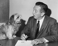 Having put his paw print on the dotted line, Bobby, a Skye terrier from the north of Scotland, is signed to a Hollywood contract by Walt Disney in one in a long line of animal actors Disney groomed for Magical Pictures From The Golden Years Of Disney Walt Disney Land, Walt Disney Company, Disney Love, Disney Magic, Disney Pixar, Brave Disney, Disney Stuff, Disney Characters, Poodle