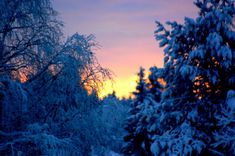 Snow Queen, Ice Queen, Nikon, Pop Culture, Celestial, Sunset, Twitter, Photography, Outdoor