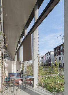Siedlung Grünmatt Zürich 2014_Graber Pulver