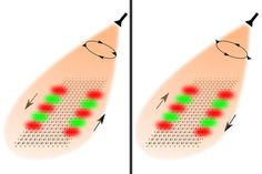 Researchers used the spin of light to guide the flow of optical information