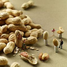 minimiam-food-photography-pierre-javelle-akiko-ida