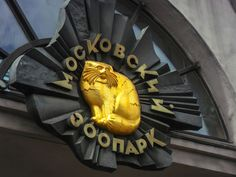 My journey to Moscow Zoo (Photos @lyubovbar).