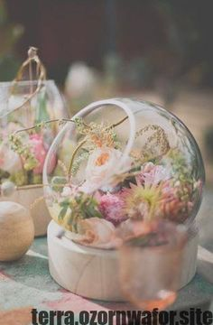 decoration Rustic Terrarium Centerpiece check out - Terrarium Centerpiece wedding Terrarium succulentes Terrarium Wedding Centerpiece, Terrarium Diy, Table Centerpieces, Wedding Centerpieces, Wedding Table, Wedding Decorations, Terrariums, Centrepieces, Tree Wedding