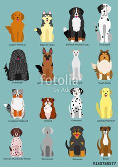 Puppy Gifts, Dog Lover Gifts, Dog Lovers, All Animals Images, Dog Socks, Dog Crafts, Dog Illustration, Cartoon Dog, Dachshund Dog