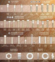 Bolt Identification Guide - First Call Auto Supply Screws And Bolts, Wood Screws, Garage Tools, Garage Workshop, Tool Organization, Tool Storage, Woodworking Crafts, Woodworking Plans, Tool Shop