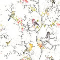 A floral trail design featuring colourful birds and metallic branches.Statement Ornithology Birds Metallic effect WallpaperStatement Ornithology Blue Birds Wallpaper - B&Q for all your home and garden supplies and advice on all the latest DIY trendsThis O Metallic Wallpaper, Embossed Wallpaper, Paper Wallpaper, White Wallpaper, Colorful Wallpaper, Wallpaper Roll, Wall Wallpaper, Bird Wallpaper Bedroom, Interior Wallpaper
