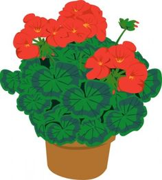 Geranium In Pot clip art Free vector in Open office drawing svg ...