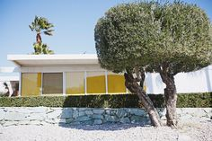 Palm Springs Mid-Century Ranch with Xeriscaping Mid Century Modern Landscaping, Mid Century Ranch, Water Wise, Palm Springs, Mid-century Modern, Xeriscaping, Landscape, Places, Scenery