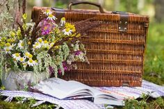 Want to impress your partner with the sweetest date ever? This post will help you learn how to plan a picnic date with ease. The perfect romantic date idea.
