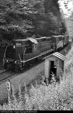 RailPictures.Net Photo: DGVR 6641 West Virginia Central Railroad EMD GP9 at Near Spruce, West Virginia by Matt Reese