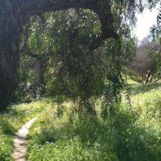 Secret Balboa Park Path. 3/11