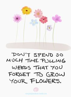 If you devote your life to pulling weeds, all you'll be left with is a pile of dead weeds. Grow the world you want to see and invest time in caring for it and appreciating it.