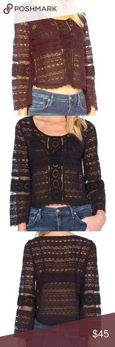 Lace top ,1sheer lace top amuse society Tops