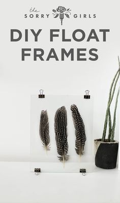 Loving these #floatframe DIYs! Adding anything flat to a float frame (like a feather) adds interest to any room! Click though to see more and follow for more DIY!