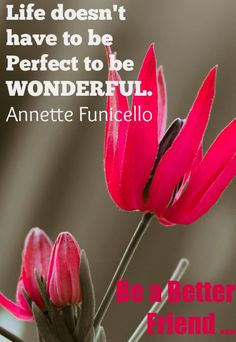 I LOVE this quote: life doesn't have to be perfect to be wonderful. -- Great girlfriend advice on being perfect http://girlfriendology.com/life-doesnt-perfect-girlfriend-advice/