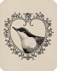 heart bird illustration transfer
