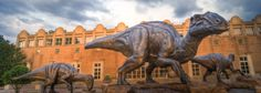 Discover cultural treasures, see ancient fossils, explore interactive exhibits, experience awe-inspiring films and get an up-close look at the world's largest dinosaurs at Fernbank Museum of Natural History.