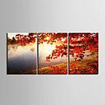 lienzo conjunto Clásico Realismo,Tres Paneles Horizontal lámina Decoración de pared For Decoración hogareña