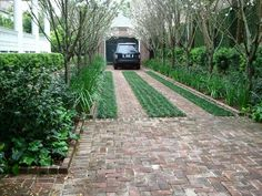 Brick driveway... only two thin rows for the tires with grass in between