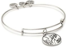 """Alex and Ani Because I Love You """"Sister"""" Russian-Silver Expandable Bangle Bracelet Alex and Ani. $28.00"""