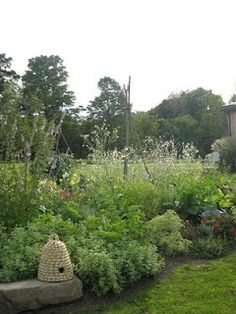 bee skep in  the garden